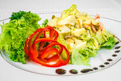 Vegetarian set. Healthy food. Delicious salad of vegetables and herbs, sauce, on a white plate. Horizontal frame Royalty Free Stock Images