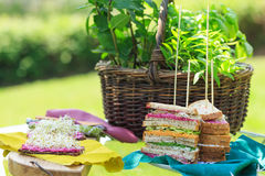 Vegetarian snacks and sandwiches Stock Images