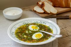 Vegetarian sorrel soup with egg, served with sour cream and bread. Rustic style. Vegetarian sorrel soup with egg, served with sour cream and bread. Rustic style royalty free stock photo