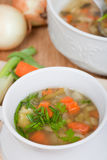 Vegetarian soup with carrot, spice, potato, onion Stock Images