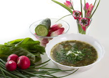 Vegetarian soup Stock Images