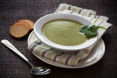Vegetarian spinach soup Royalty Free Stock Photos
