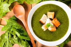 Vegetarian spinach soup Stock Photography