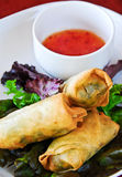 Vegetarian spring rolls Stock Photography