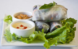 Vegetarian spring rolls Royalty Free Stock Photography