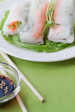 Vegetarian spring rolls. Stock Images