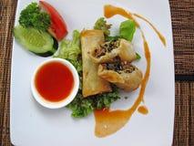 Vegetarian springrolls Stock Image