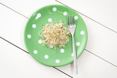 Vegetarian sprouts meal Royalty Free Stock Photography