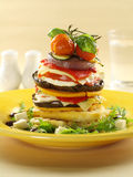 Vegetarian Stack Royalty Free Stock Image
