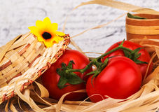 Vegetarian still life of tomato. On background Royalty Free Stock Photo