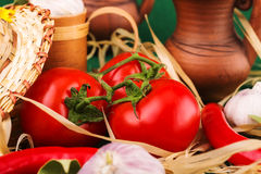 Vegetarian still life of tomato. On background Stock Images