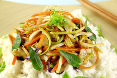 Vegetarian Stirfry Royalty Free Stock Images