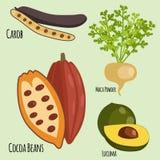 Vegetarian superfood healthy vegetable eco food fresh organic traditional gourmet nutrition vector illustration. Stock Photo