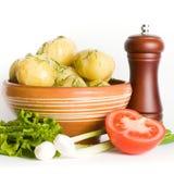 Vegetarian supper Stock Image