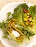 Vegetarian Tacos Stock Photos