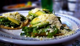 Vegetarian tacos with avocado, cheese, lettuce and prickly pear cactus royalty free stock photography