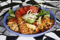 Vegetarian Tempeh Bowl. A vegetarian tempeh salad Royalty Free Stock Images