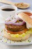Vegetarian tofu burger. Stock Photos
