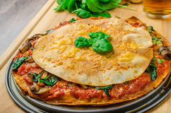 Vegetarian tortilla and bolognese sauce Stock Images