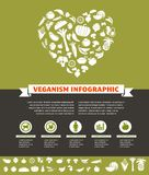 Vegetarian and vegan, healthy organic infographic Stock Image