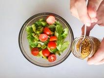 Vegetarian vegetable salad. Fresh salad flying to bowl in super slow motion. Avocado Tomato Salad.  royalty free stock image