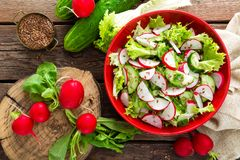 Vegetarian vegetable salad of radish, cucumbers, lettuce salad and flax seeds. Healthy  vegan food. Top view Royalty Free Stock Images