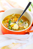 Vegetarian vegetable soup Royalty Free Stock Photo