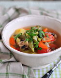 Vegetarian vegetable soup Stock Images