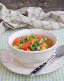 Vegetarian vegetable soup Royalty Free Stock Images