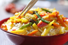 Vegetarian wok with bamboo and corn Stock Photography