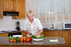 Vegetarian woman Stock Image