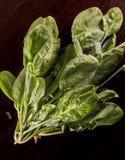 vegetarianism Fotos de archivo libres de regalías