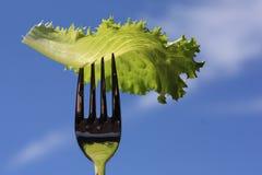 Vegetarianismo immagini stock