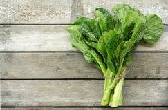 Vegetariano Imagen de archivo libre de regalías