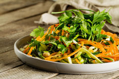 Vegetariano di verdure saporito fresco o insalata grattata vegano con Carr immagine stock libera da diritti