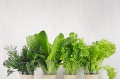 Vegetariano fresco che è a dieta le piante delle insalate verdi in vasi sulla plancia di legno bianca, spazio della copia Stile d fotografie stock