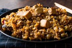 Vegetariano Fried Rice Rice com Tofu/Pilav ou pilau fotografia de stock royalty free