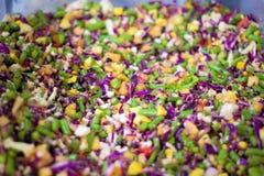 Vegetariano no vegetariano imagens de stock royalty free