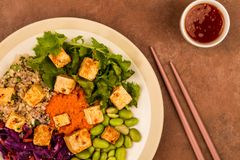 Vegetariano picante do estilo asiático ou salada do Tofu do vegetariano Foto de Stock Royalty Free