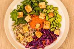 Vegetariano picante do estilo asiático ou salada do Tofu do vegetariano Fotos de Stock