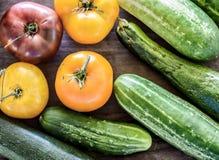 Vegetarianos do verão Imagens de Stock