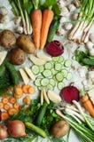 Vegetarianos e composição alaranjados e verdes das raizes em uma ardósia escura t Foto de Stock Royalty Free