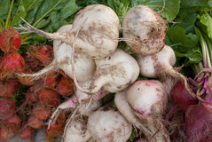 Vegetarianos no mercado Imagens de Stock Royalty Free