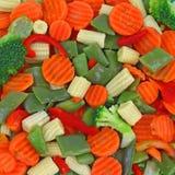 For vegetarians Stock Image