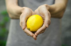 Vegetarians and fresh fruit and vegetables on the nature of the theme: human hand holding a lemon on a background of green grass Royalty Free Stock Photography
