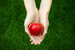 Vegetarians and fresh fruit and vegetables on the nature of the theme: human hand holding a red apple on a background of green gra Royalty Free Stock Photos