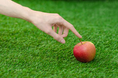Vegetarians and fresh fruit and vegetables on the nature of the theme: human hand holding a red apple on a background of green gra Stock Photos