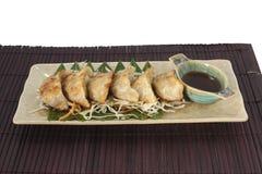 Vegetarier Gyoza mit Soße Lizenzfreie Stockfotos