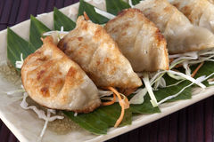 Vegetarier Gyoza mit Soßennahaufnahme Lizenzfreie Stockfotografie