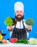 vegetarier Reifer Chef mit Bart Gesundes Lebensmittelkochen Bärtiger Mannkoch in der Küche, kulinarisch Nähren und organisch lizenzfreie stockbilder